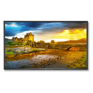 65″ NEC UHD 4K 10-PT Touch LED Display Rental