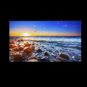 55″ NEC Ultra Narrow Bezel (UN551S) Display Rental