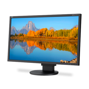 24″ LED NEC Display Rental